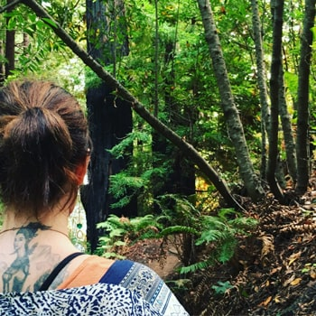 Retreat Rumination: Last night I dreamt I was back in Big Sur